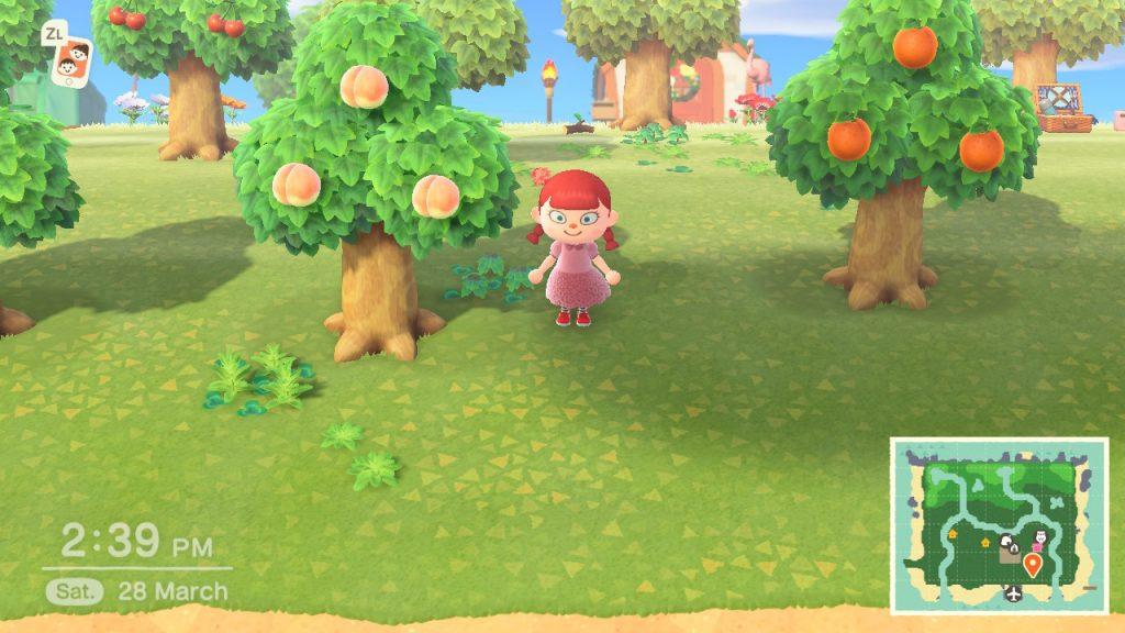 Обзор Animal Crossing: New Horizons. Когда ипотека в радость 14