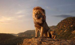 СМИ: сиквел «Короля Льва» уже в производстве. Его поставит режиссер «Лунного света»