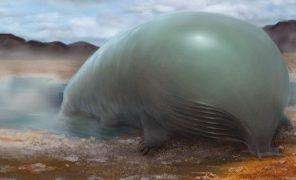 Возможна ли небелковая жизнь? Кремний, фосфор и метан как основа органики