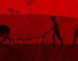 Читаем книгу «Годы риса и соли» Кима Стэнли Робинсона