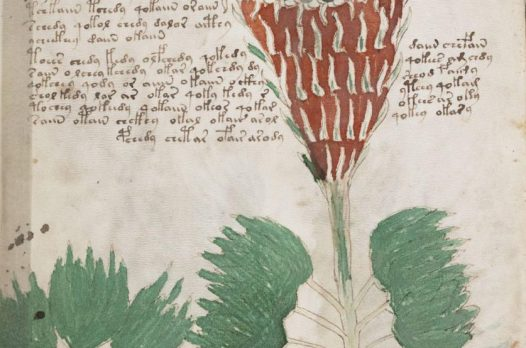 Нерасшифрованные тексты: загадки древних символов 6