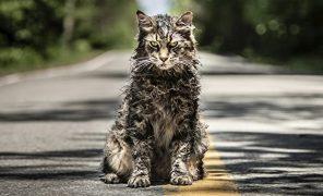 Для Paramount+ выйдет приквел «Кладбища домашних животных»
