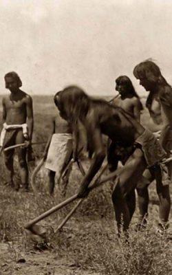 апачи 1