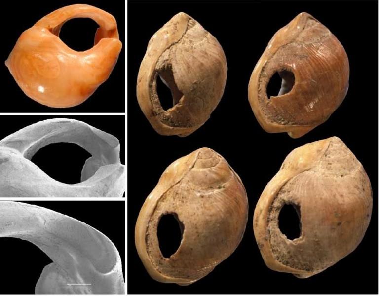 Настоящий каменный век: какой была жизнь первобытных людей 12