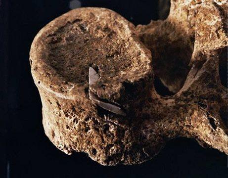 Настоящий каменный век: какой была жизнь первобытных людей 8