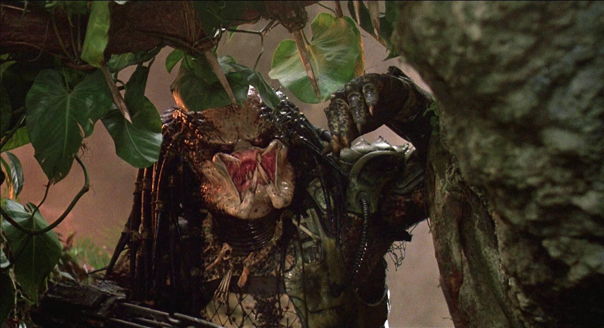 Сценаристы «Хищника» 1987 года подали на Disney в суд