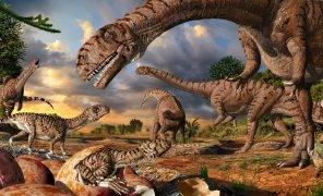 Какими могли быть динозавры? Мозг в заднице, солнечная батарея и другие странные теории палеонтологов